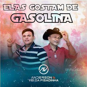 Anderson & O Vei Da Pisadinha - Elas Gostam de Gasolina Versão Gravão - DJ Romario Roba Cena