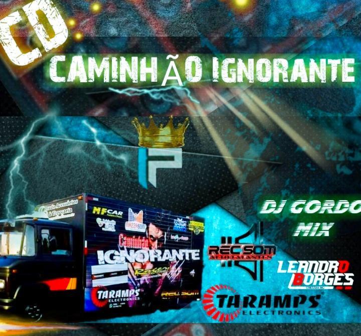 CAMINHÃO IGNORANTE VOL 01 BY DJ LEANDRO BORGES DE UBERABA MG DJ GORDO MIX