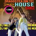 DRAGOSTEA DIN TEI DJ NILDO MIX   HOUSE  REMIX