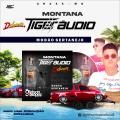 Montana Tiger Audio - MODÃO SERTANEJO  - Gleison  Lopez