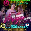 NAIARA AZEVEDO  DJ IVIS  DJ NILDO MIX ME CHAMA MOZÃO REMIX PANCADÃO