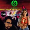 Remix Tiktok Dance 2022 Dj Nildo Mix