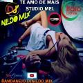 TE AMO DE MAIS  DJ NILDO MIX STUDIO MEL REMIX