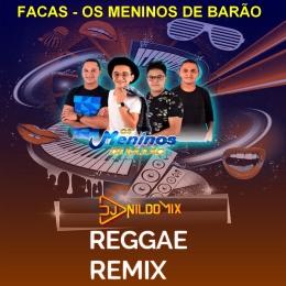 OS MENINOS DO BARÃO DJ NILDO MIX REGGAE REMIX FACAS 2021
