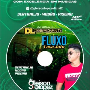 DL Despachante + Fluxo Lava Jato - Gleison Lopez