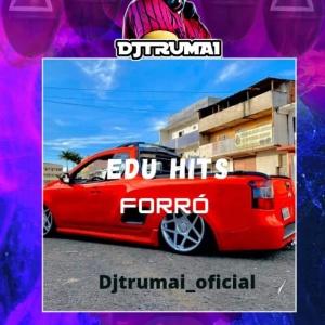 CD EDU HITS -FORRÓ - DJ TRUMAI