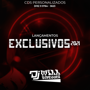 LANÇAMENTOS EXCLUSIVOS 2K21 - DJ WILL APIAI-SP