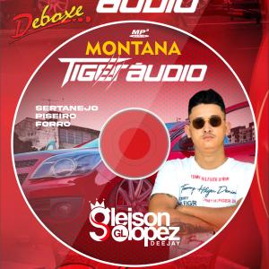 Montana Tiger Audio - FORRÓ - SERTANEJO - Araxá MG - Gleison  Lopez