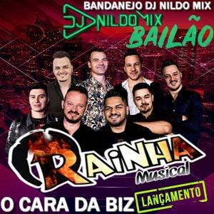 RAINHA MUSICAL O CARA DA BIZ DJ NILDO MIX  2021