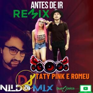 TATY PINK E ROMEU DJ NILDO MIX ANTES DE IR REMIX 2021